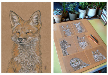 SOLD : Fox portrait by Maiwenn