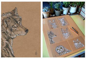 SOLD : Wolf portrait by Maiwenn