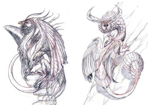 . Bird Dragons .