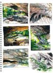 Plumes landscapes 01