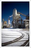 Industry Standard by MushroomMagic