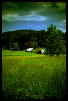 Island Farm by MushroomMagic