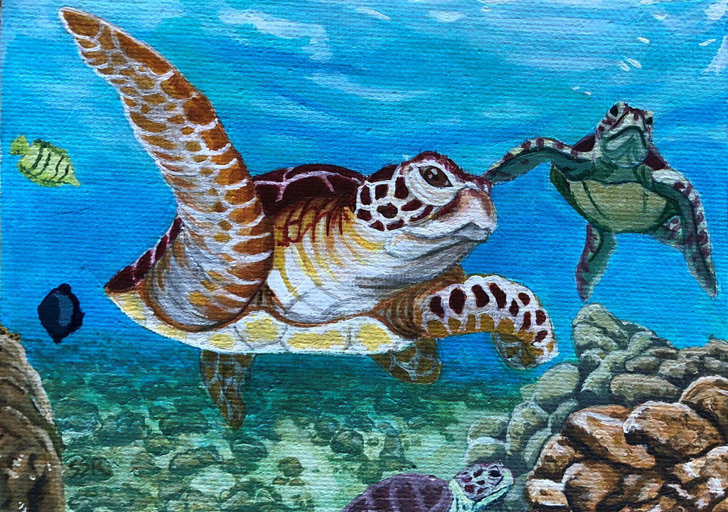 Sea Turtle Commission by gloryblaz
