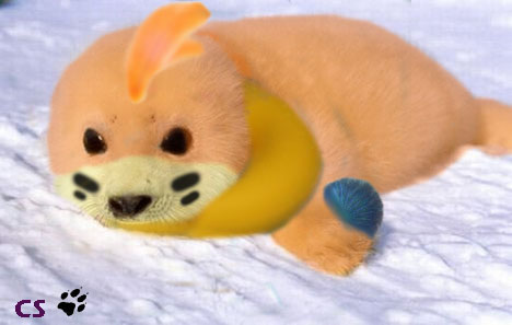 Buizel_by_wolfhowler14.jpg