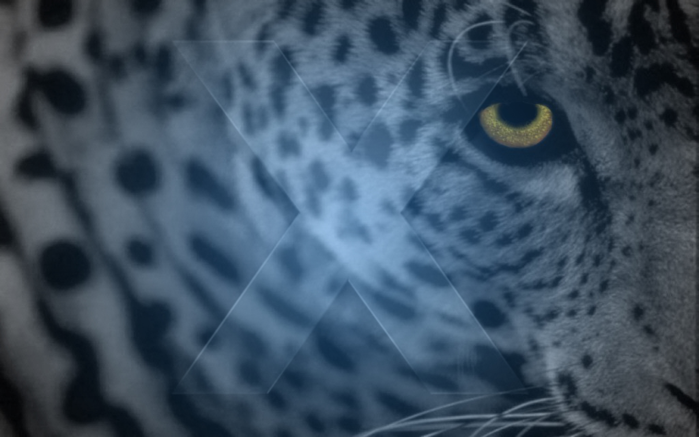 Leopard by IMcD23