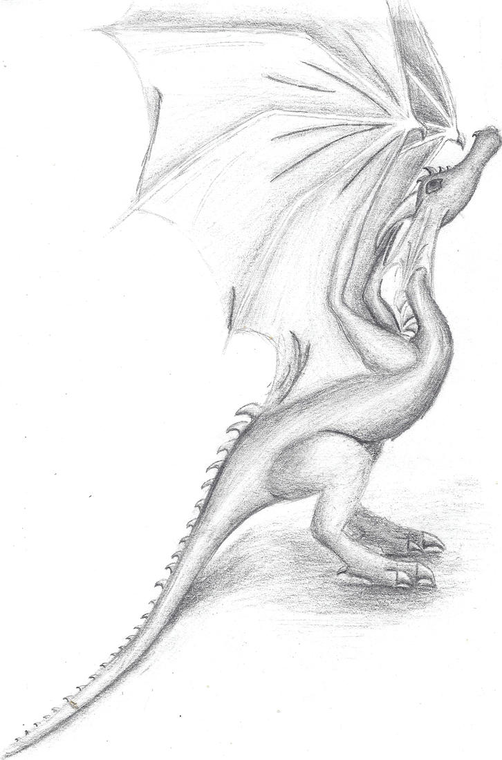 another wyvern by tru-wulf