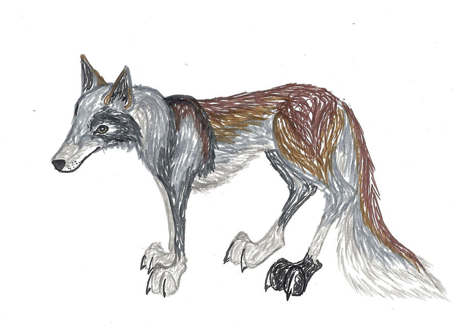 Wolf Drawing by tru-wulf