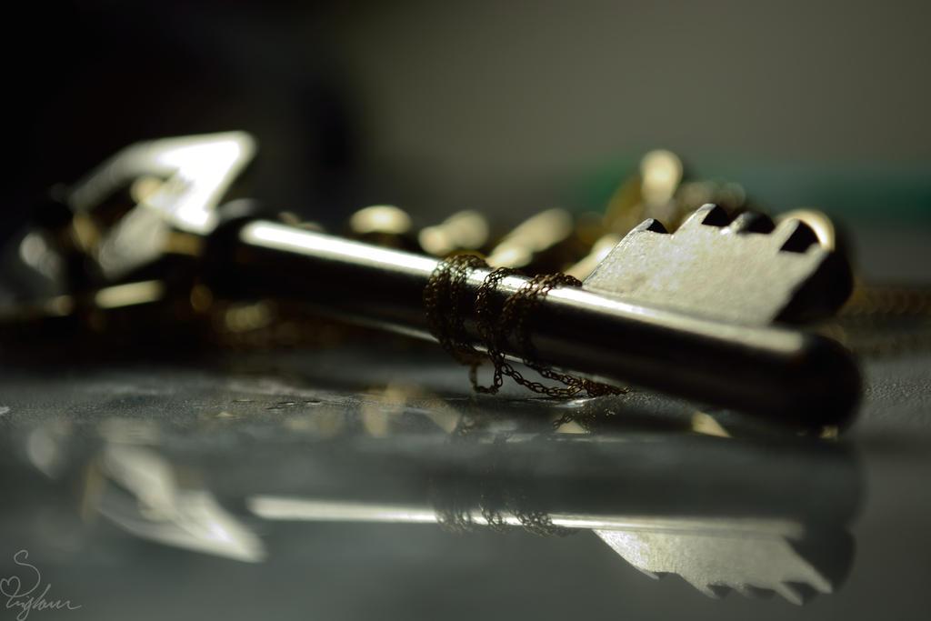 The Key by tru-wulf