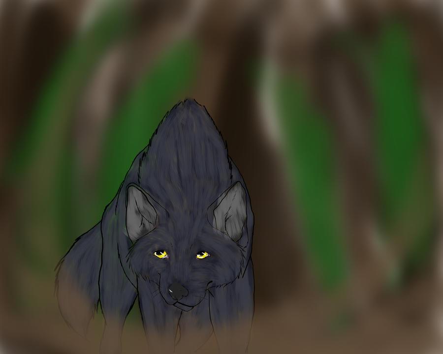 Wolf by KLSenko