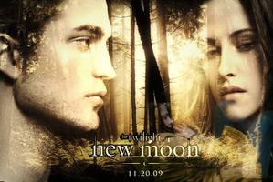 Edward and Bella New Moon by carola84