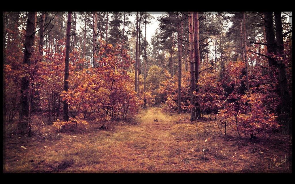 Nature Color Tones
