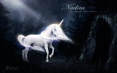 Nadira: the essence of timeless beauty