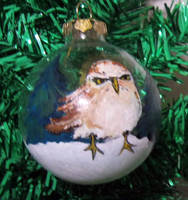 Scrooge Owl ornament by askoi