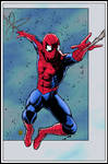 Spider-Man by ElieBongrand COLOUR