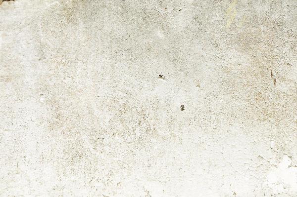 texture004 by buzillo-stock