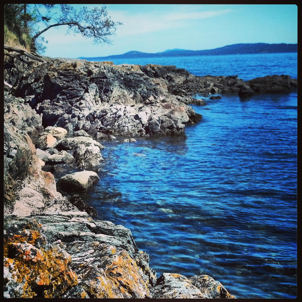 Arbutus Cove, Victoria,BC by Strikes11