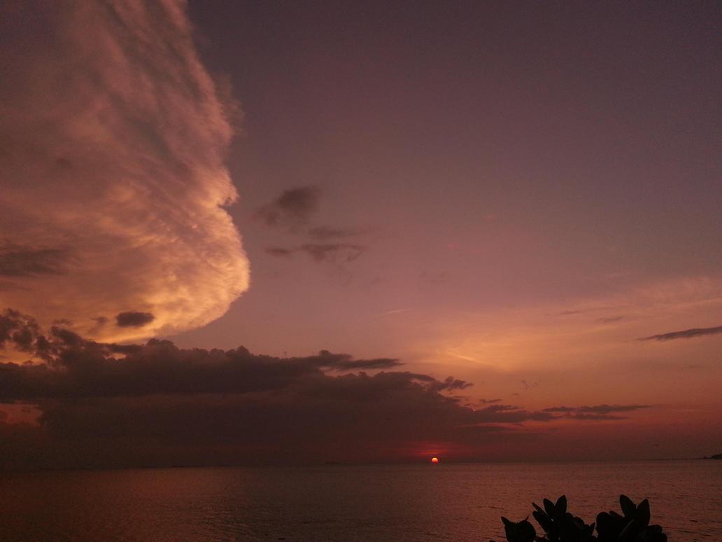 Sunset lion by bonobourne
