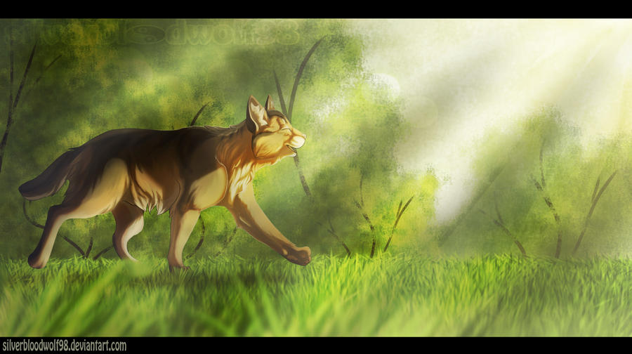 sunny morning :.commission.: + video link added by Silverbloodwolf98
