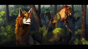 The last hunt + video!