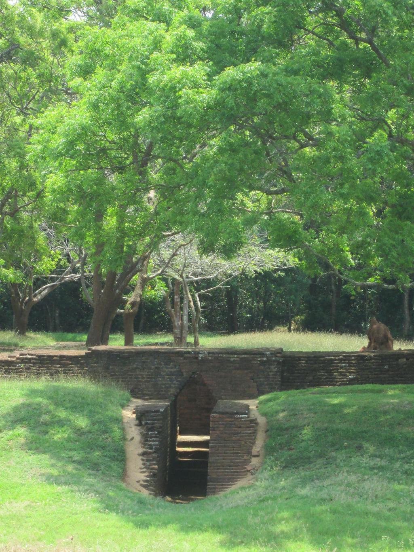 Sigiriya (Water Garden) by aliasjjj