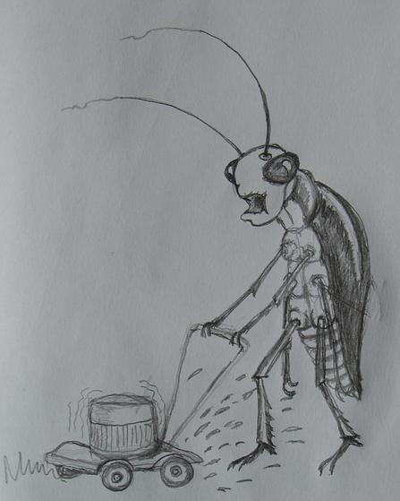 Karakon