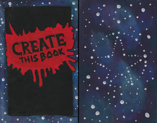 Create This Book: Front and Back Covers by SyrinxPriest2112