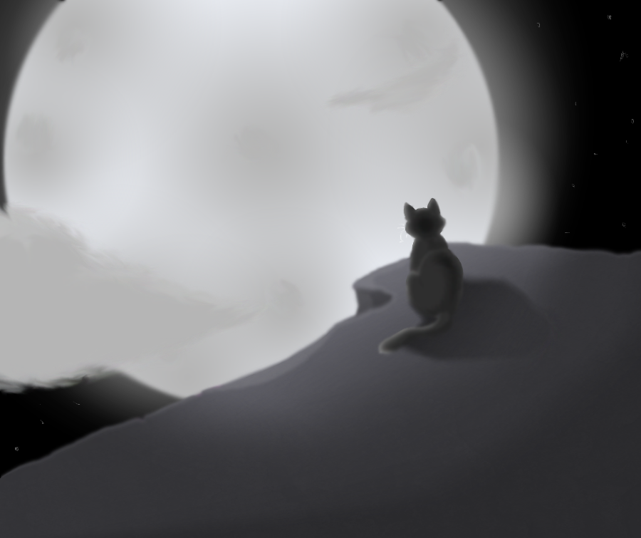 Skywatcher by Rosepetal866
