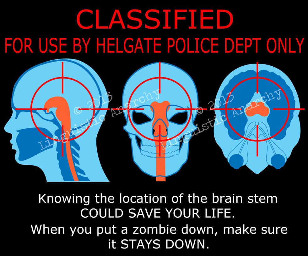 Brain Stem Diagram 2 by theGhostWolfe on DeviantArt