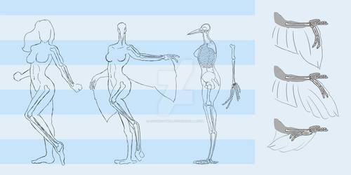 Bird-Human-Hybrid Skeleton