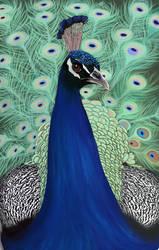 Peacock by Nette-Yoon