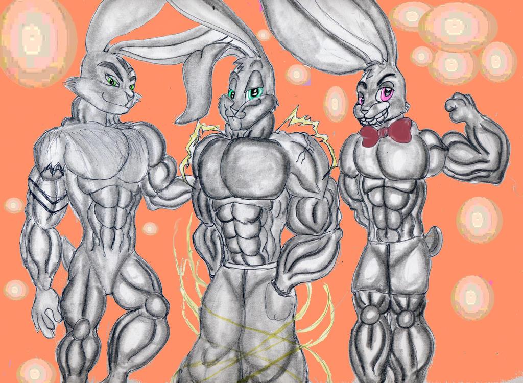 sexy rabbits