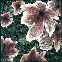 Rhododendron 'Girard Rose' by InnocenceBurning