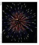 Fireworks: Sea Urchin