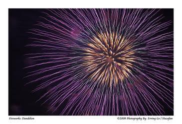 Fireworks: Dandelion by Huzafan