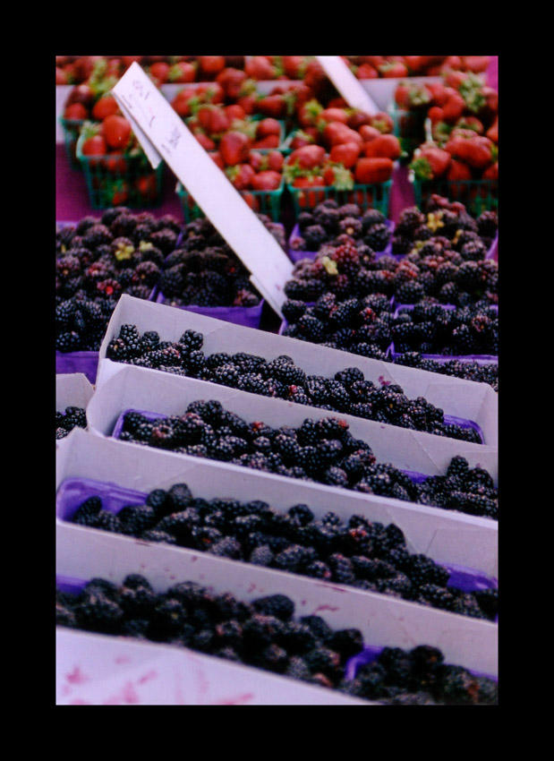Berry Stand by kalany