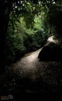 lighted path by strikenz