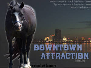 Downtown Attraction