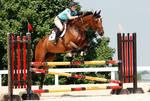 Jumper Horse 18