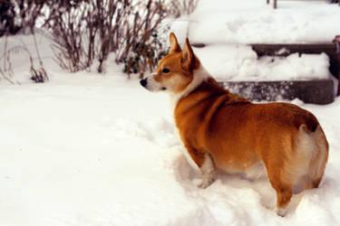 Snow Day by SilentParade284