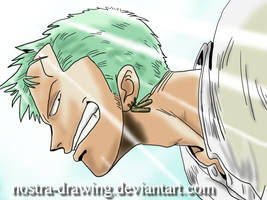 Zoro by Nostra-Drawing