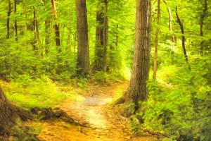 Appalachian Trail by oldhippieart