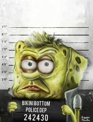 Mugshot Bob
