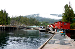 Telegraph Cove Canada, BC by chrystal-anne