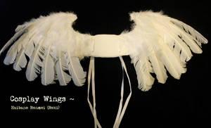 Cosplay wings - Haibane Renmei by mintynote