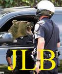 JLB thumbnail 1 by blueeyedfreak