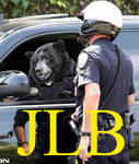 JLB thumbnail 2 by blueeyedfreak
