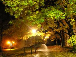 fall night 2 by blueeyedfreak