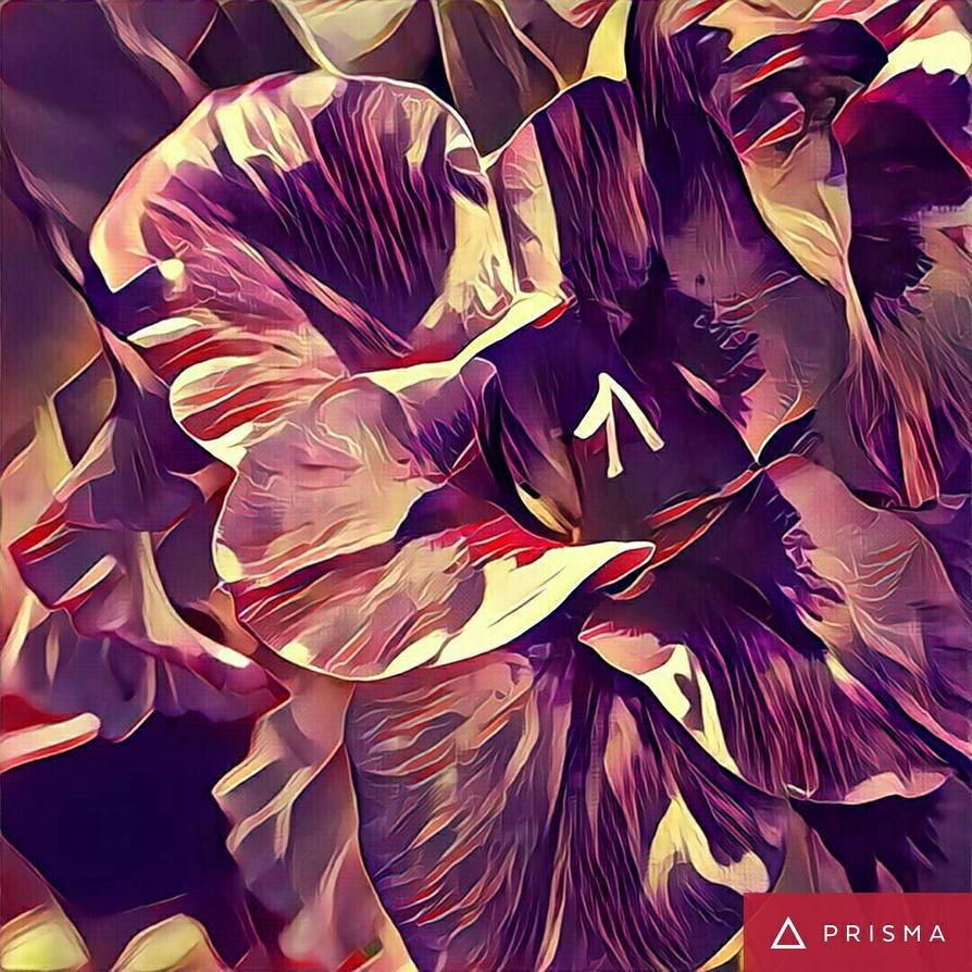 prisma  by huntercobb