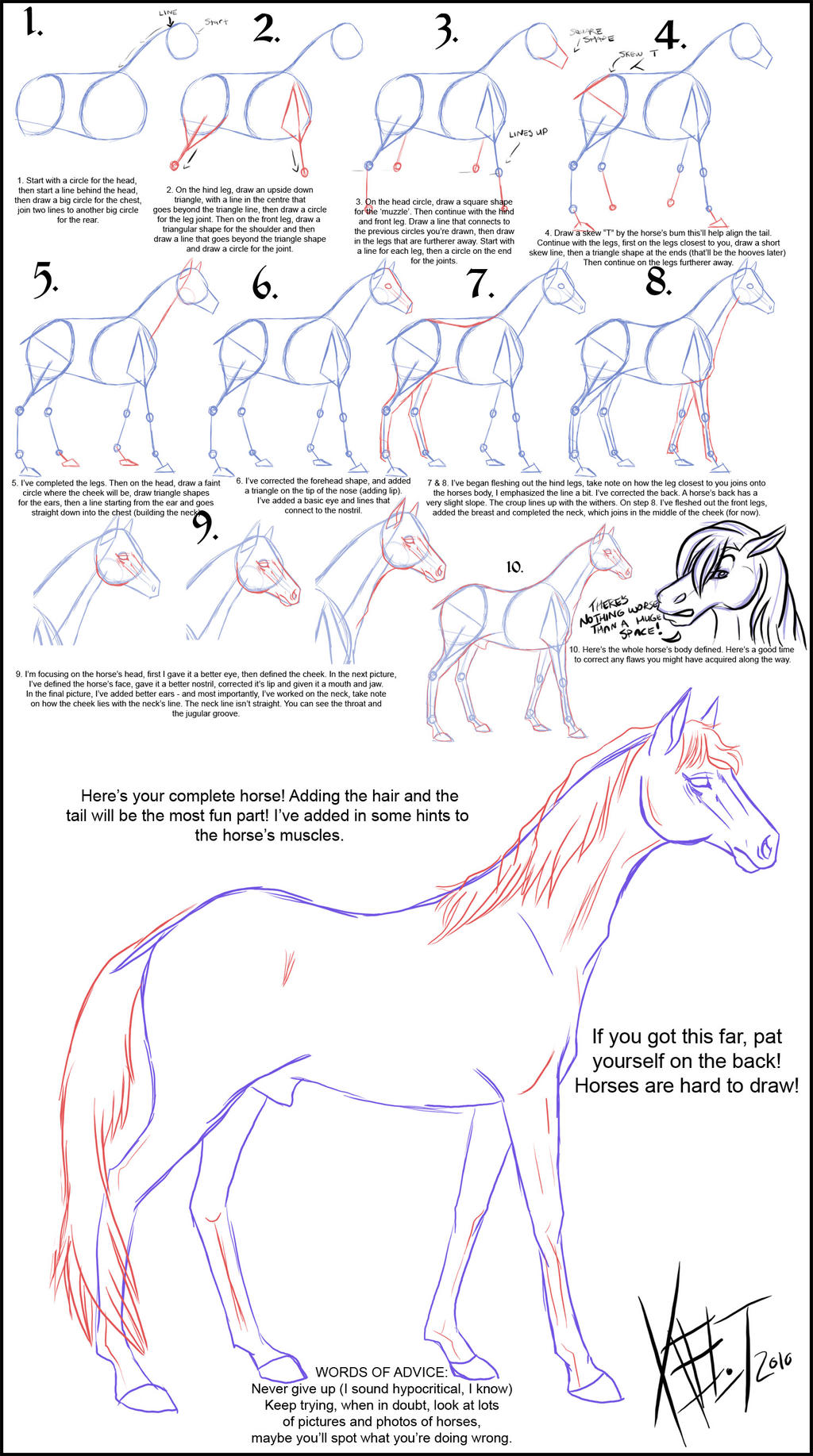 SERIOUSLY HORSING AROUND: Fun graphic on HOW TO DRAW A HORSE