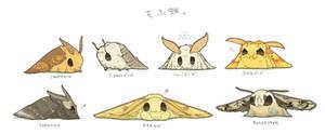 Cute moths.